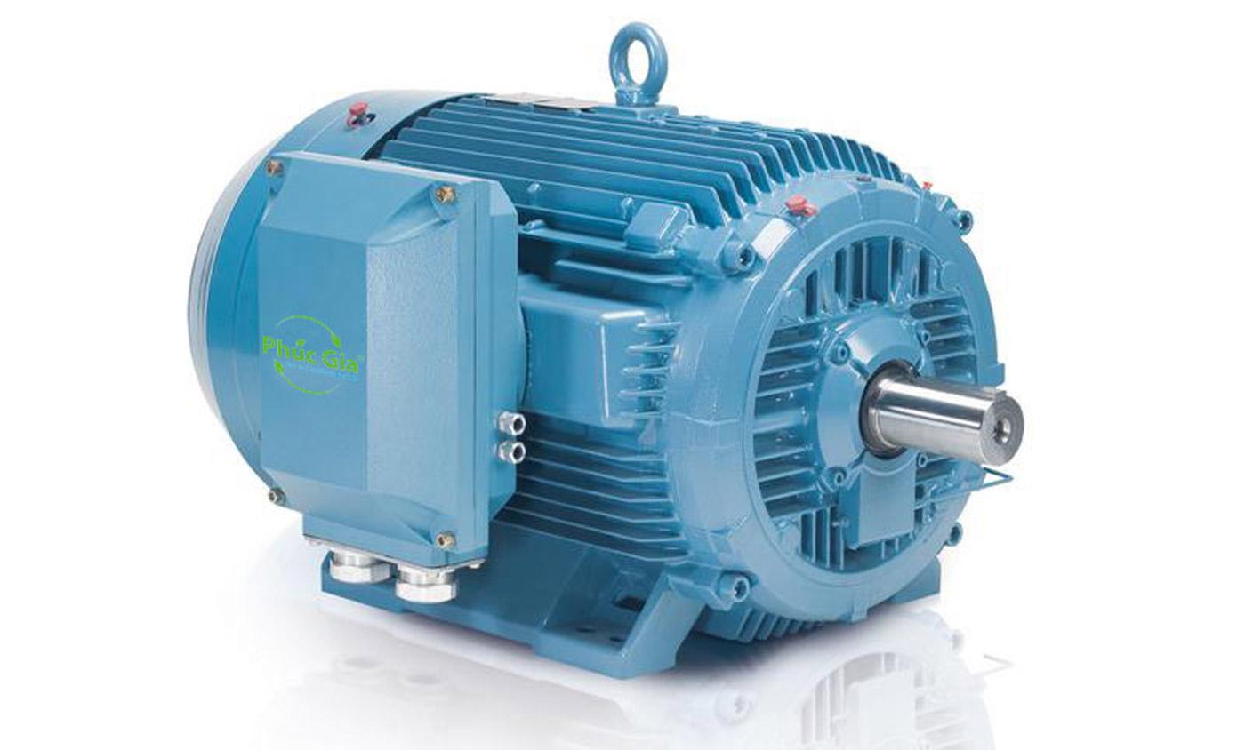 Chế độ hoạt động của động cơ điện